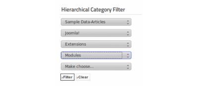 Hierarchical Category Filter