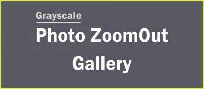 Grayscale Photo ZoomOut Gallery