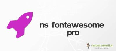 NS FontAwesome Pro
