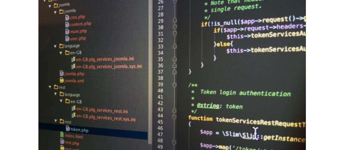cAPI Core REST API, by Annatech - Joomla Extension Directory