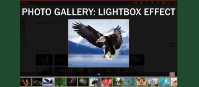 Photo Gallery: Lightbox effect