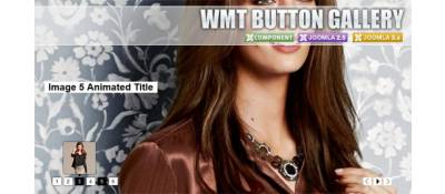WMT Button Gallery